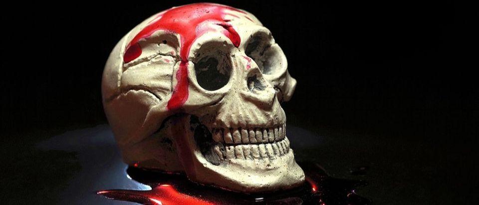 bloody skull Pixabay/Arcaion