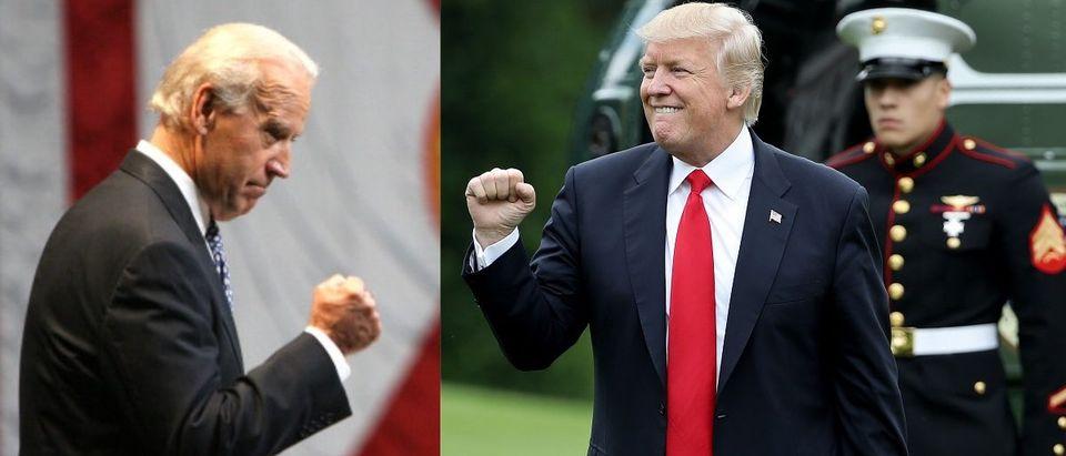 Joe Biden and Donald Trump (Photos by Win McNamee/Getty Images/Joe Burbank/Orlando Sentinel/MCT via Getty Images)