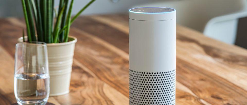 White Amazon Echo Plus (Photo: Shutterstock)