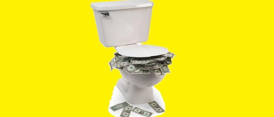 toilet money Shutterstock James Steidl