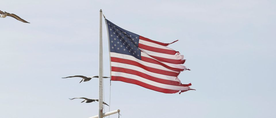 Pelicans and tattered American flag at Surfside Park near Vilando Beach in Florida