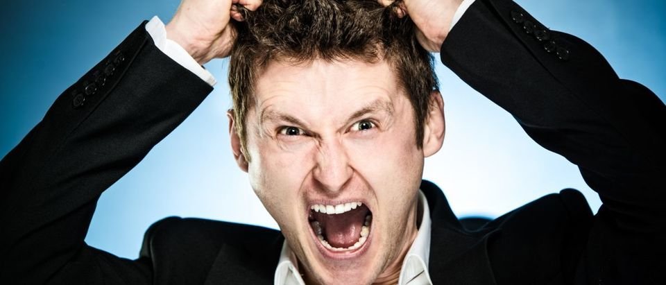 Angry businessman pulls his hair out and shouting - ShutterStock - Plantic | Vox: Whites Are Afraid Of Being Replaced