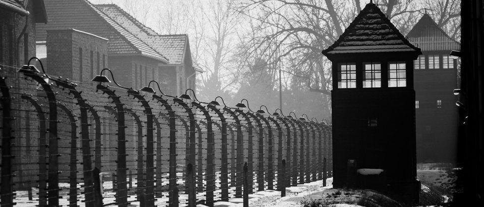 AuschwitzPolandNaziGermanyHolocaust