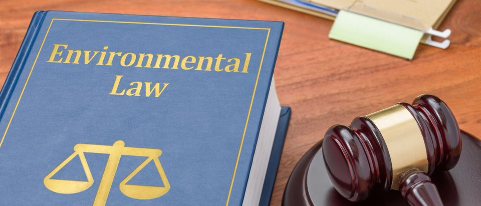 Pictured is a law book with a gavel. (Shutterstock/Zerbor)
