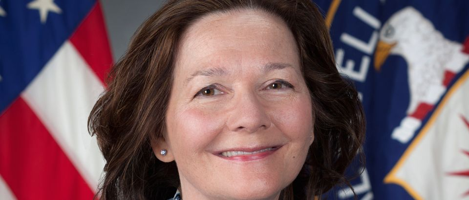Gina Haspel, confirmed head of the CIA, is shown in this handout photograph released on March 13, 2018. (Photo: CIA/Handout via Reuters)