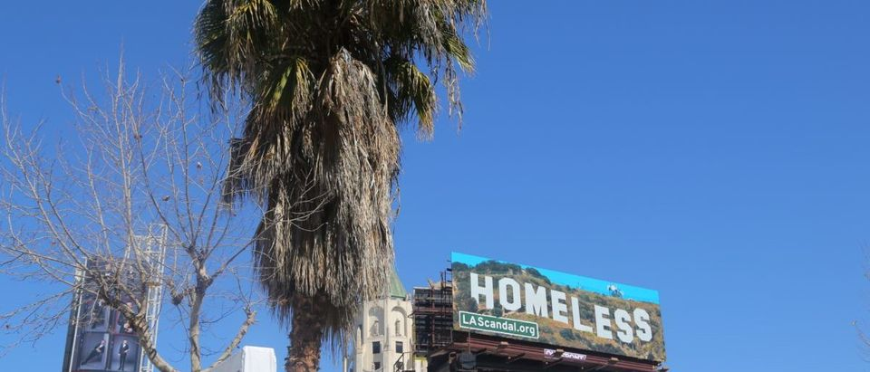 A sign promoting a website which highlights homeless issues is seen next to a palm tree in Los Angeles, California, U.S. March 4, 2018. Picture taken March 4, 2018. REUTERS/Chris Helgren | LA Wants People To House Homeless People