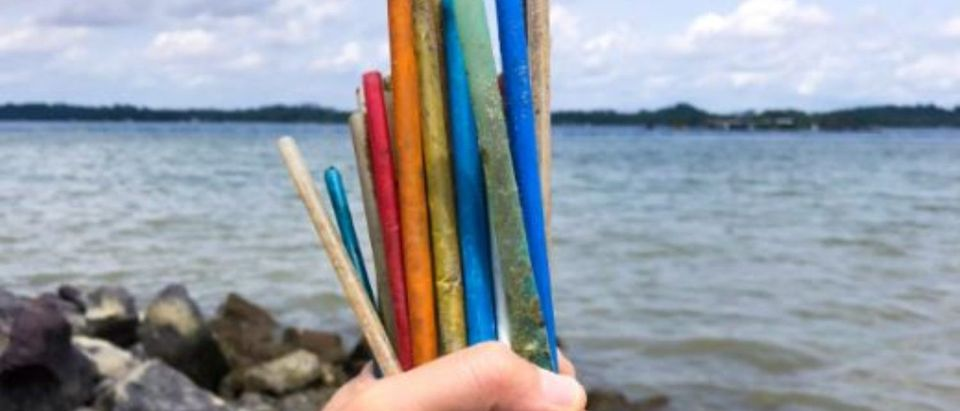 Plastic straws were found on a beach in Singapore. (Sutterstock/Loretta Sze)