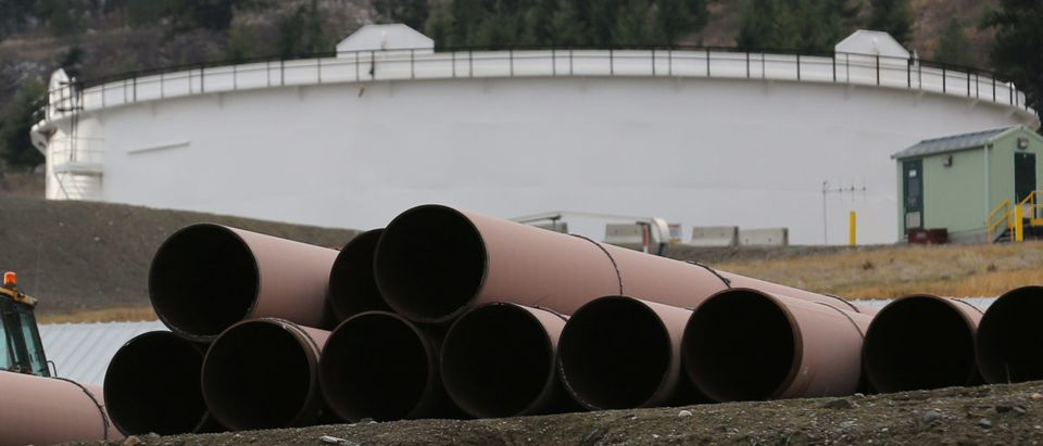 FILE PHOTO: Replacement pipe is stored near crude oil storage tanks at Kinder Morgan's Trans Mountain Pipeline terminal in Kamloops, British Columbia, Canada November 15, 2016. REUTERS/Chris Helgren | Businesses Upset Over Pipeline Delay