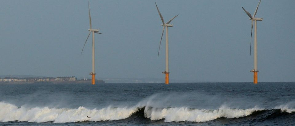 FILE PHOTO: A couple walk their dog on Redcar beach past an offshore wind farm in Redcar, northeast England January 11, 2015. REUTERS/Andrew Yates | NextEra Energy Hates Offshore Wind