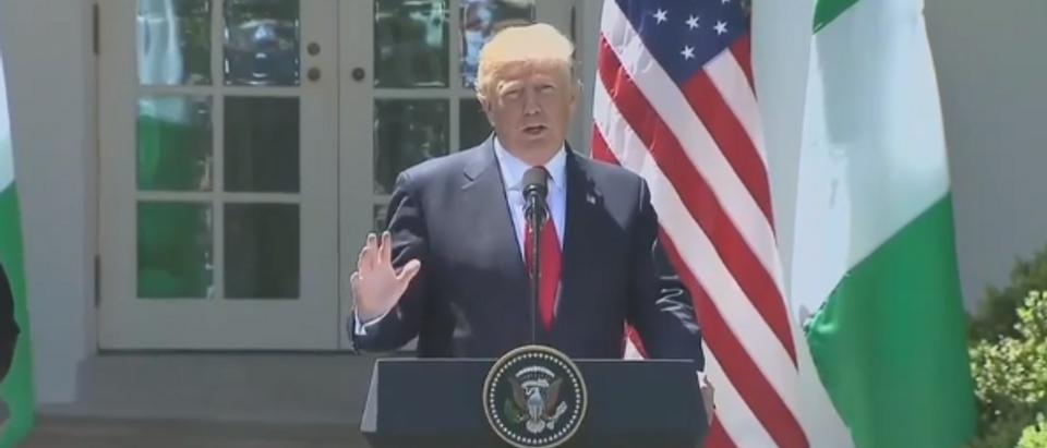 President Trump (screengrab)