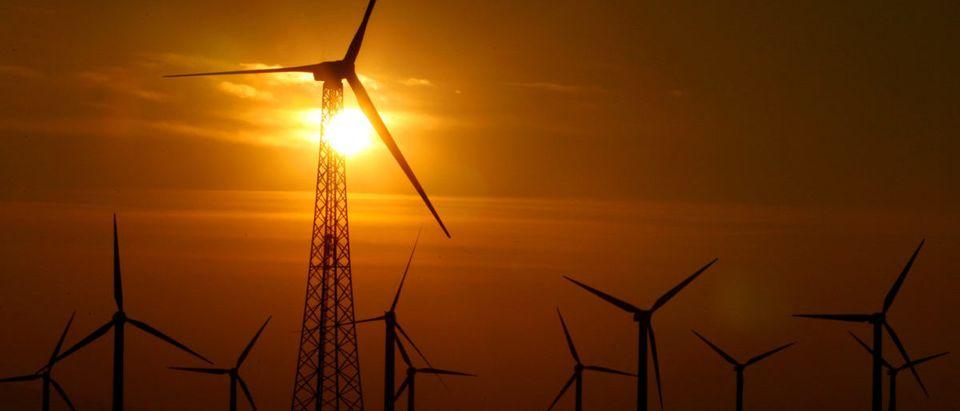 The sun rises over a windmill farm in Palm Springs, California November 26, 2005. REUTERS/Lucy Nicholson