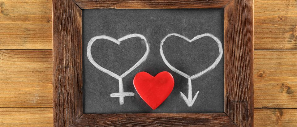 Blackboard with drawn gender symbols and red heart on wooden background Shutterstock/Africa Studio | Sex Ed Teacher On Leave After Videos