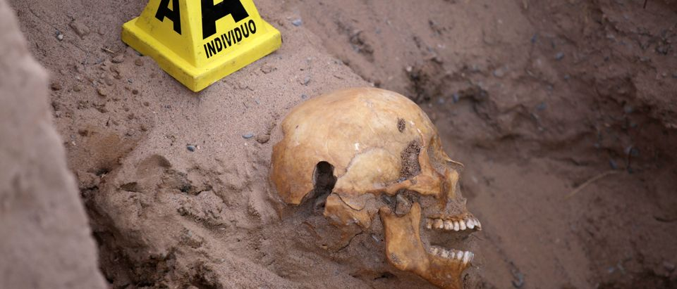 An evidence marker is seen next to a skull during the exhumation of a clandestine grave at an abandoned villa in the municipality of Guadalupe, in the Juarez Valley, Mexico March 2, 2018. REUTERS/Jose Luis Gon