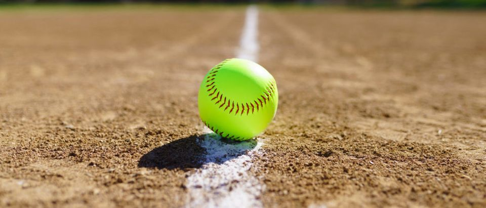 Softball (Credit: Shutterstock)