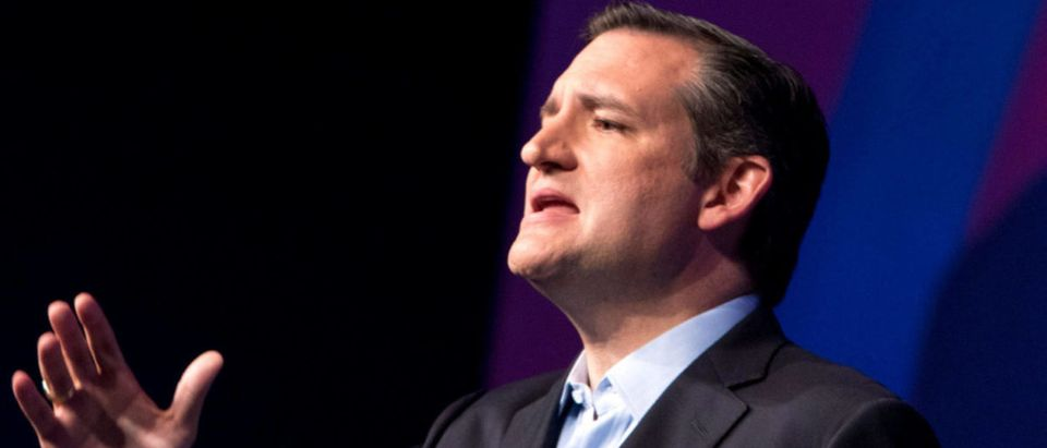 FILE PHOTO: Republican presidential hopeful Sen. Ted Cruz (R-TX) speaks during a Rally for Religious Liberty in Des Moines, Iowa, U.S., August 21, 2015.   Cruz Opens Big Lead Against Beto