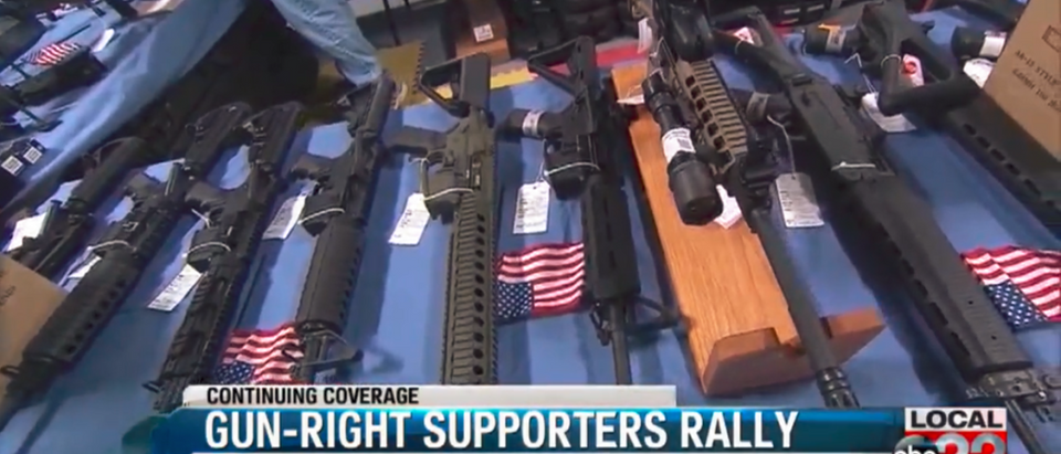 Vermont Second Amendment Rally - Screenshot ABC WVNY 4-8-18   Activists Hold Gun Rights Rally In VT