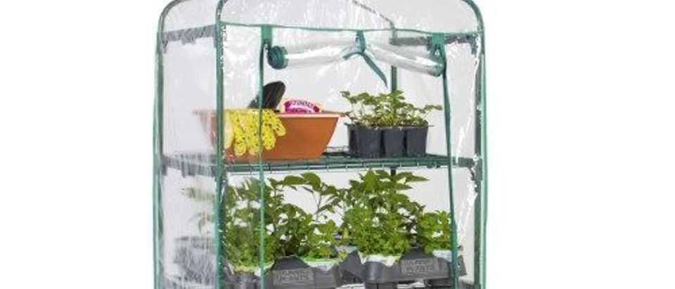 Normally $79, this mini greenhouse is 53 percent off (Photo via Jet.com)