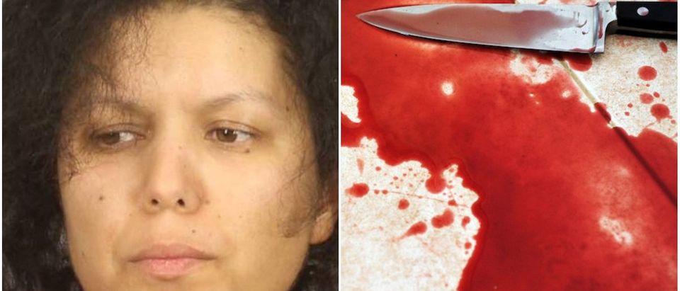 Hanane Mouhib Mug Shot/Monroe County Sheriff's Department/Bloody Knife On Kitchen Floor-Via Shutterstock