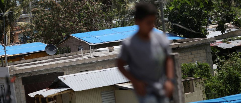 A boy walks near houses with plastic sheets replacing roofs hit by Hurricane Maria in September, in a neighbourhood in Canovanas