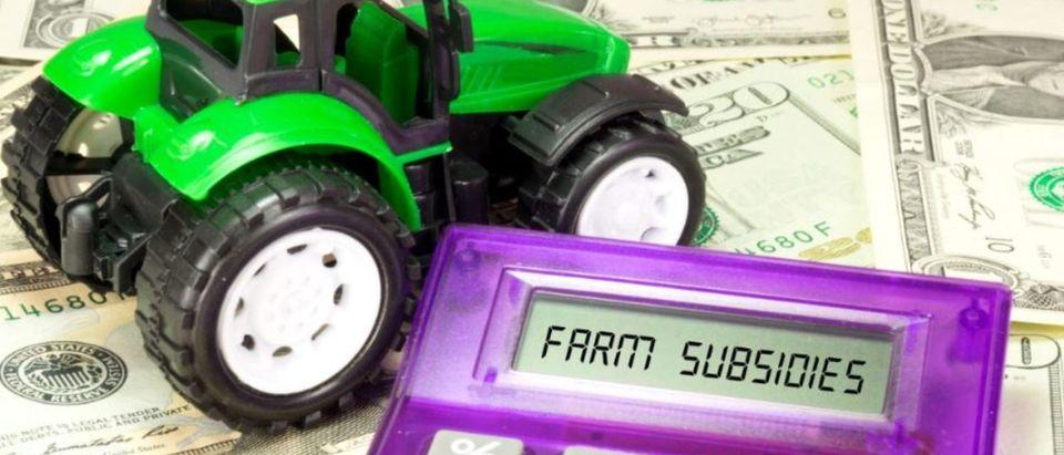 Tractor, calculator and farm subsidy (Bartolomiej Pietrzyk/Shutterstock)