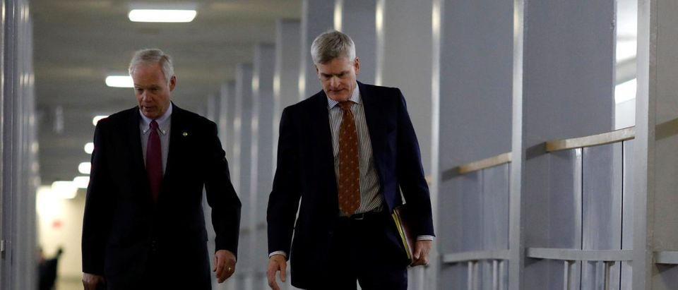 Sen. Ron Johnson (R-WI) (L) and Sen. Bill Cassidy (R-LA) walk to the party luncheons on Capitol Hill in Washington, U.S. January 23, 2018. REUTERS/Aaron P. Bernstein