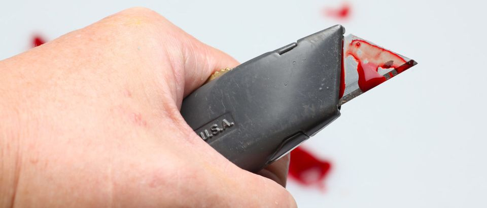 A box cutter used for non-box cutting purposes. [Shutterstock - a katz] | Philadelphia Airport Man Stabs Coworker