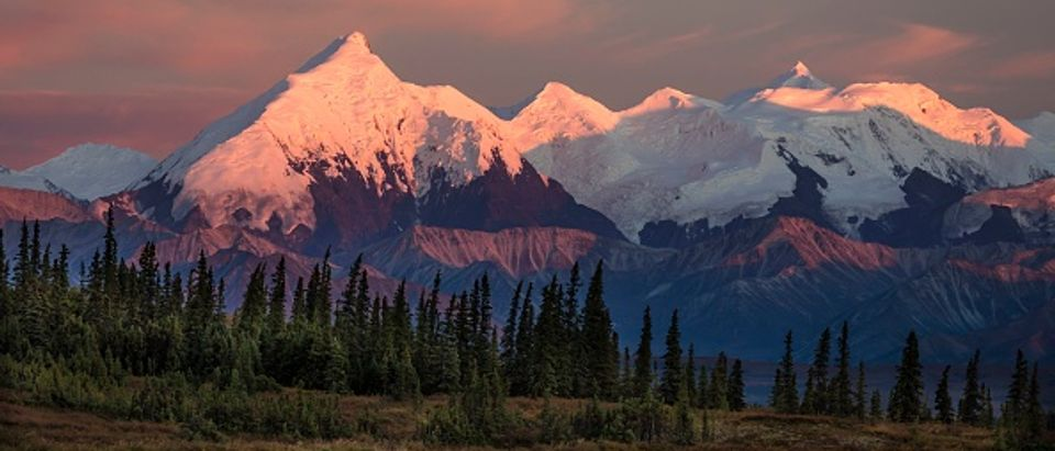Mount Denali from Wonder Lake, Denali National Park, Alaska
