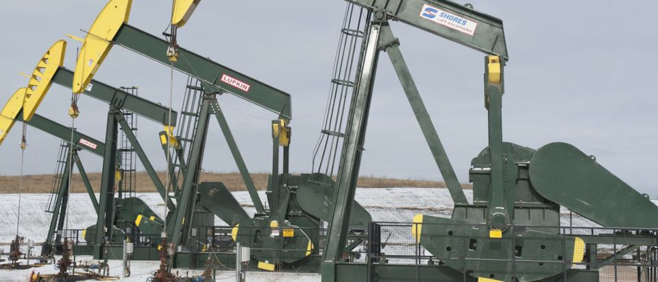 Pumpjacks taken out of production temporarily stand idle at a Hess site while new wells are fracked near Williston, North Dakota November 12, 2014. REUTERS/Andrew Cullen | Study Finds Nuclear Helps Atmosphere