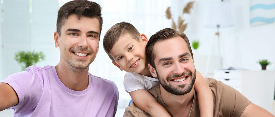 gay adoption shutterstock