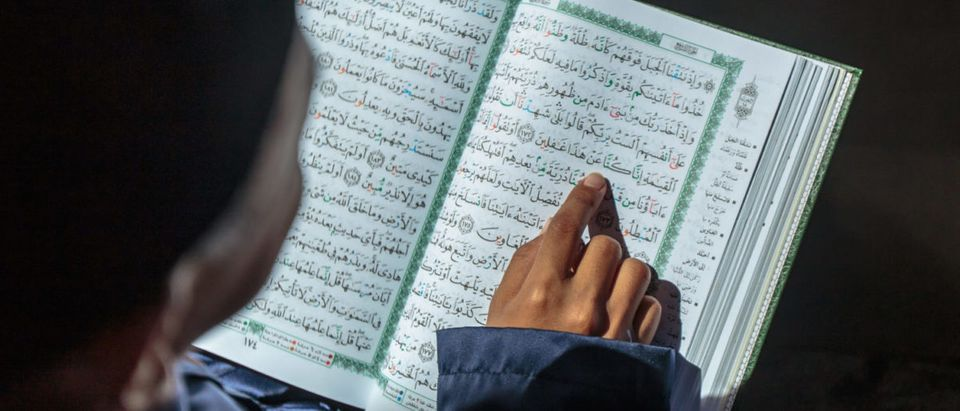 Kid Reading the Quran (shutterstock/ Yusnizam Yusof) | School Asks Kids To Write Shahada