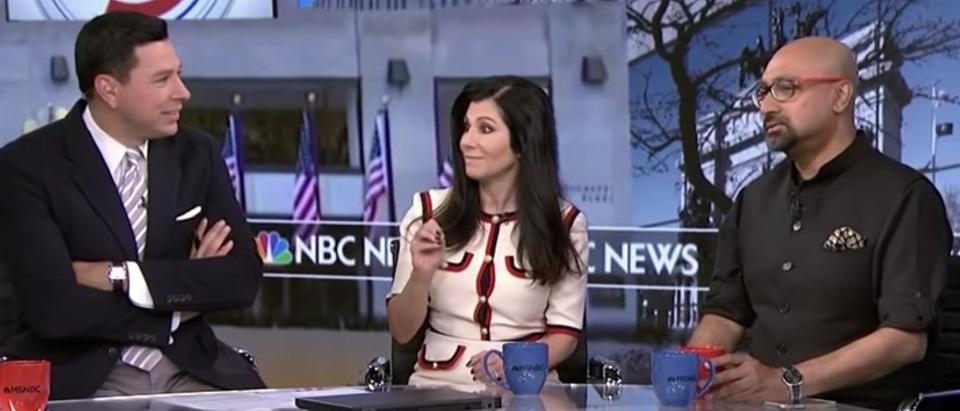 MSNBC Panel (screengrab)