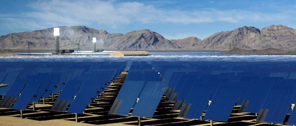 FILE PHOTO: Heliostats are shown during a tour of the Ivanpah Solar Electric Generating System in the Mojave Desert near the California-Nevada border