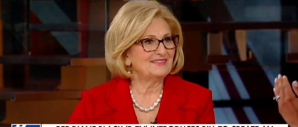 GOP Rep Diane Black Proposes Crowdfunding to Help Pay for Border Wall Congresswoman Diane (Screenshot, YouTube)