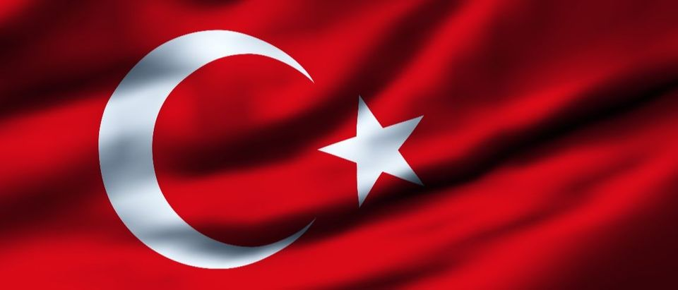 Turkey Turkish flag Shutterstock Filip Bjorkman