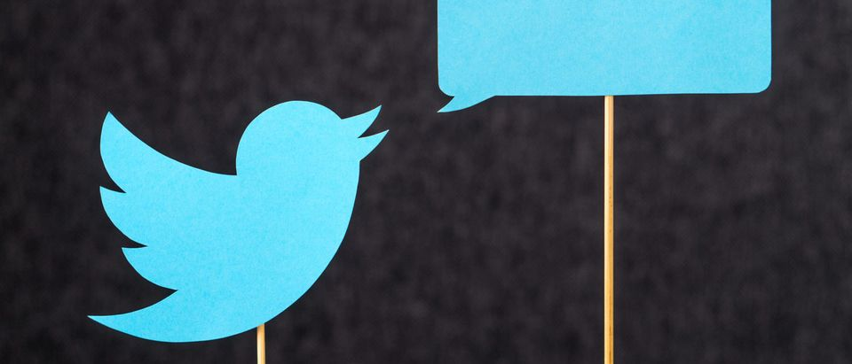 TwitterBlueBird