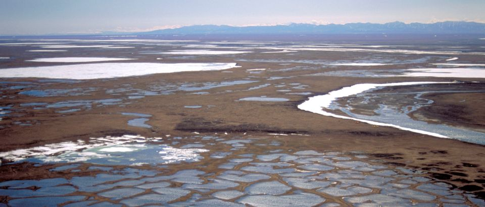 Coastal plain of the 1002 Area is seen within the Arctic National Wildlife Refuge