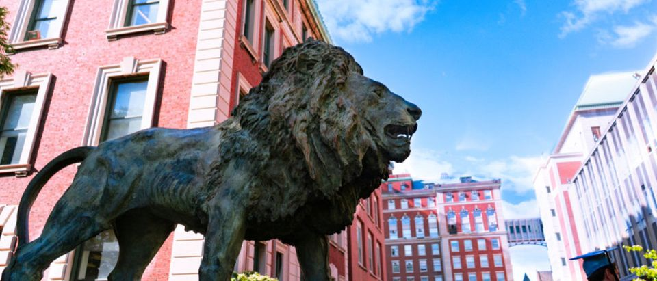 A lion statue is featured at Columbia. (Shutterstock/CICICHING)