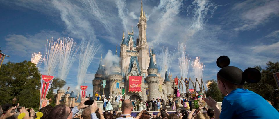 Fireworks go off around Cinderella's castle during the grand opening ceremony for Walt Disney World's new Fantasyland in Lake Buena Vista, Florida December 6, 2012. REUTERS/Scott Audette