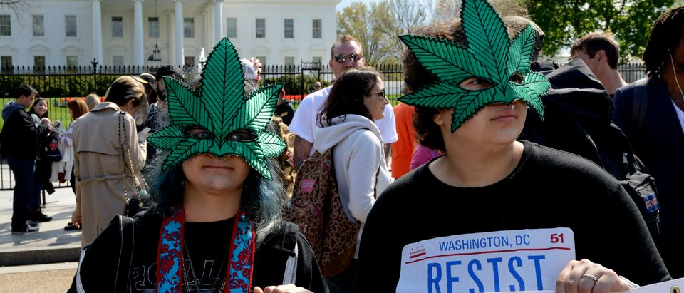 POT-PROTEST-WH-US-CANNIBAS-MARIJUANA