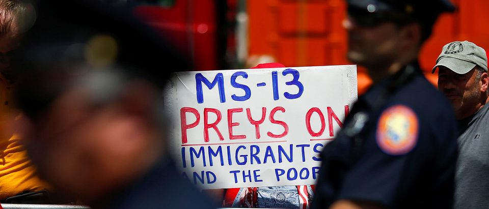 U.S. president Trump supporters hold placards during a forum about Central American-based Mara Salvatrucha (MS-13) gang organization at the Morrelly Homeland Security Center in Bethpage, New York