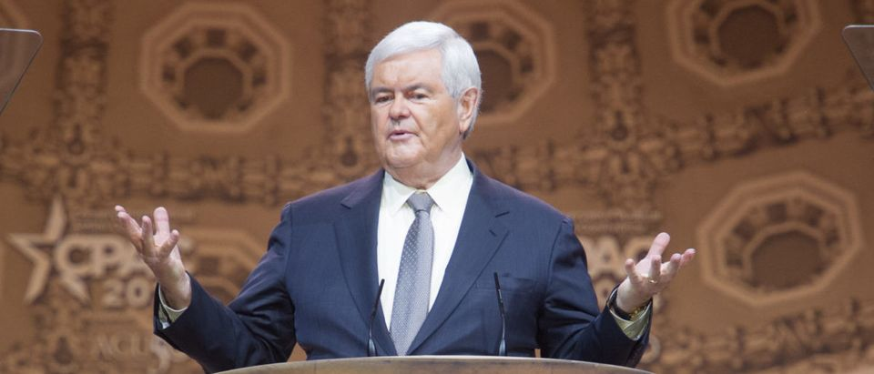 Newt Gingrich speaks at the Conservative Political Action Conference -- ShutterStock -- Christopher Halloran