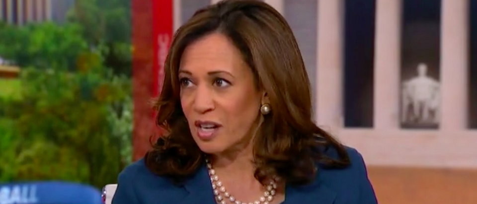 "California Democratic Sen. Kamala Harris said there would be the ""destruction of the Constitution"" if President Donald Trump got to pick the Supreme Court justice to replace Justice Anthony Kennedy, Wednesday on MSNBC's ""Hardball with Chris Matthews."" (Screen shot/ Grabien/ MSNBC)"