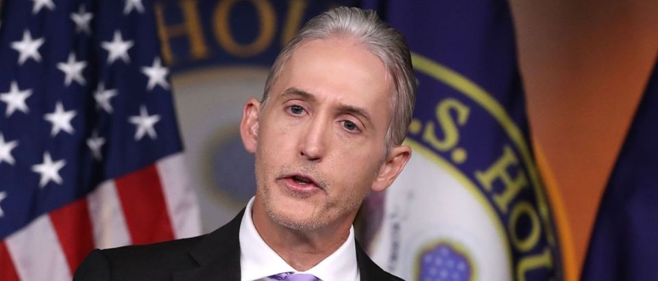 Trey Gowdy (Getty Images/Mark Wilson)
