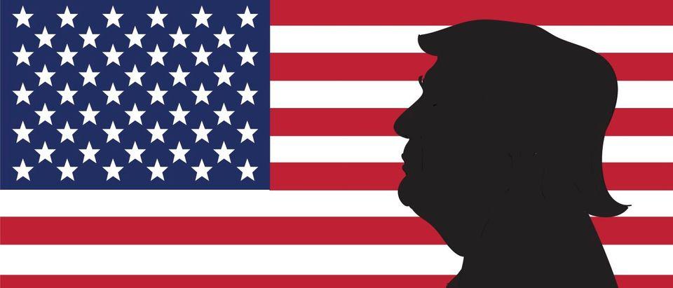 16 OCT, 2016: Donald Trump portrait on US flag background. Marina Linchevska Royalty-free stock vector ID: 516556561