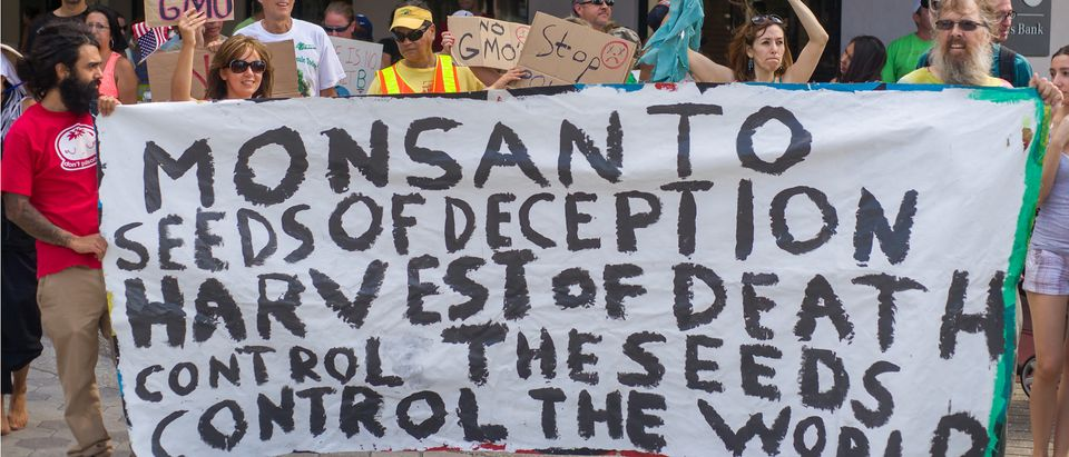 Protesters rallied in the streets against the Monsanto corporation. The company is accused of genetically modifying foods unsafely. May 25, 2013 in Orlando, Florida (Photo: Shutterstock/Ira Bostic)