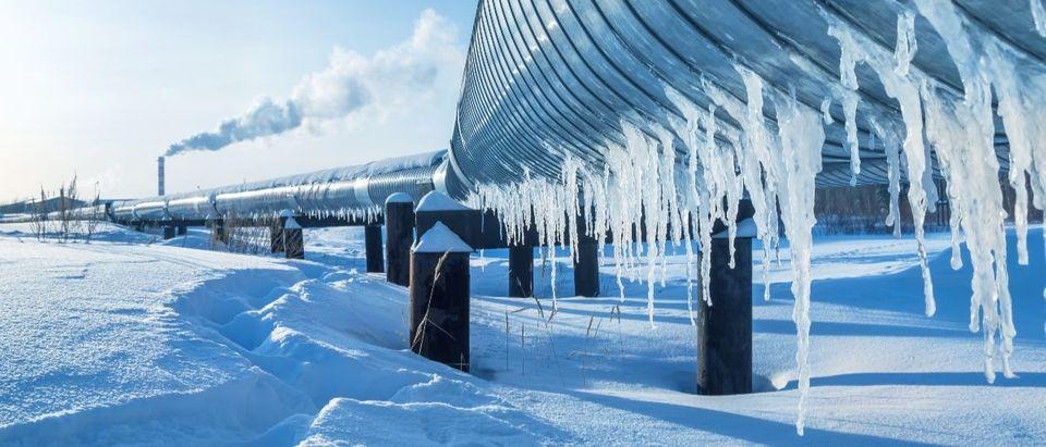 natural gas Russia Shutterstock/Leonid Ikan