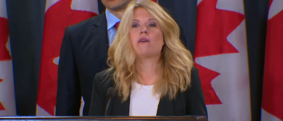 Conservative Immigration Critic Michelle Rempel holds a news conference at the House of Commons, Ottawa Canada, on July 24, 2018. YouTube screen capture.