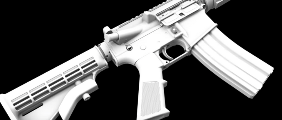 Pictured is a 3-D printed ghost gun. [YouTube/Screenshot]