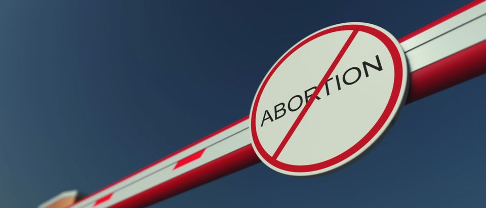 Pictured is abortion with a line drawn through it.(Shutterstock/Novikov Aleksey)