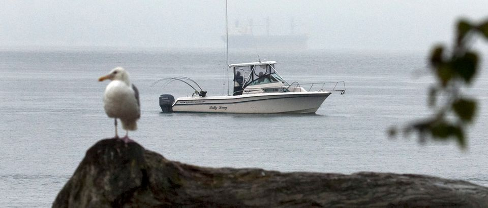 Sport fishermen troll for salmon at the mouth of the Capilano River in West Vancouver